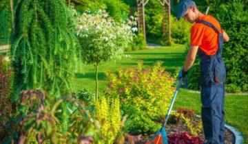 услуги садовника на участке